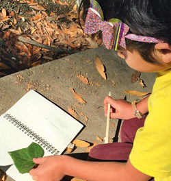 Outside School Uses Nature as the Classroom