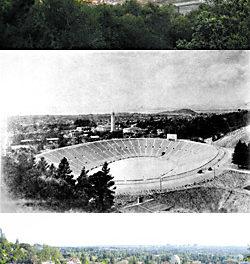 The Original Berkeley Bowl